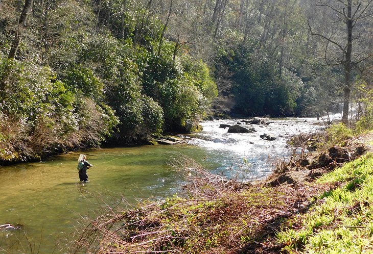 10 Top-Rated Rivers for Trout Fishing in North Carolina | PlanetWare