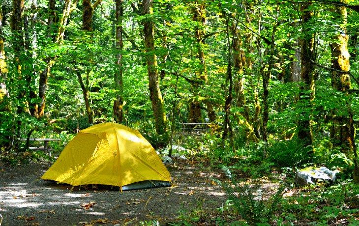 Campamento Mineral Park