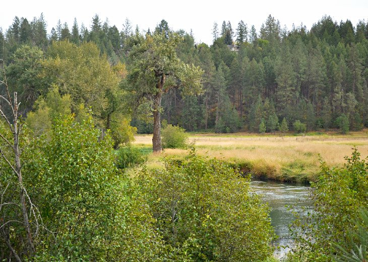 Little Spokane River Natural Area