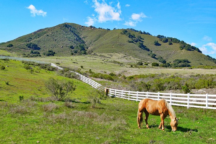 Idyllic countryside around San Luis Obispo