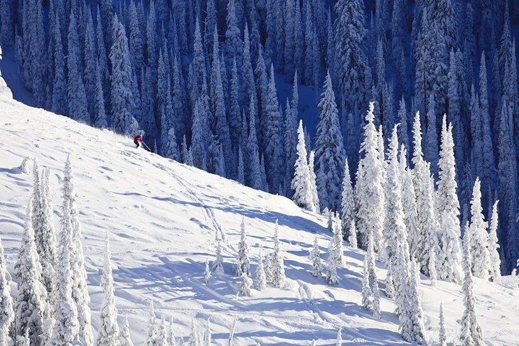 Un esquiador cortando polvo fresco en Whitefish Mountain.