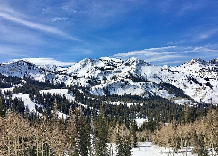 Los picos de las montañas en un día de bluebird en Brighton, Utah