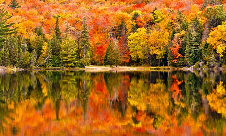 Fall colors in Algonquin Provincial Park