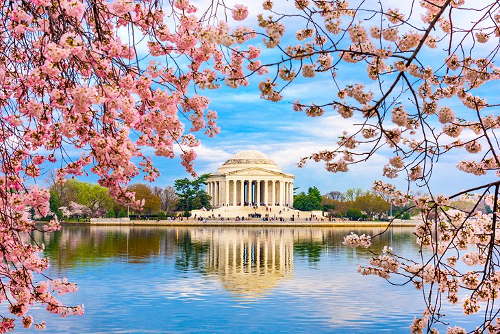 17 Top-Rated Tourist Attractions in Washington, D.C. | PlanetWare on