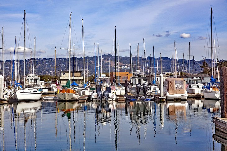 Image result for 4 Things to Do When the Weather is Nice in Berkeley, California