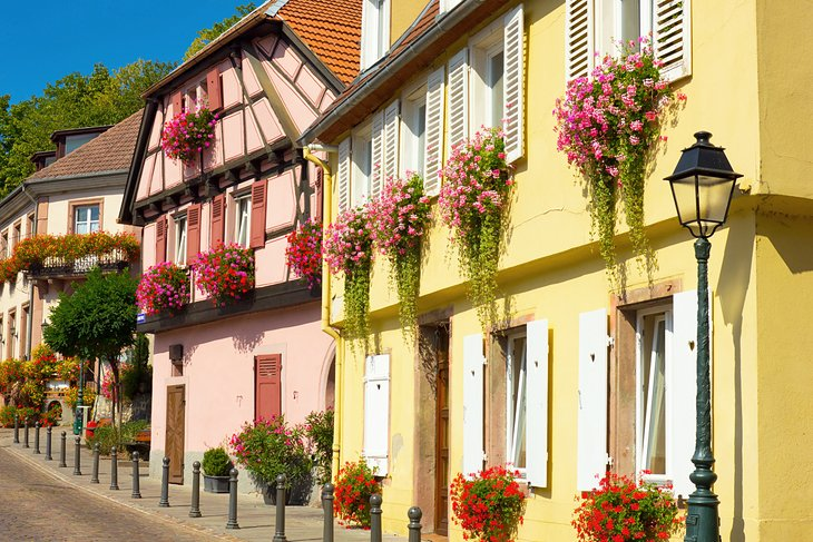Ribeauvillé historic houses with floral displays