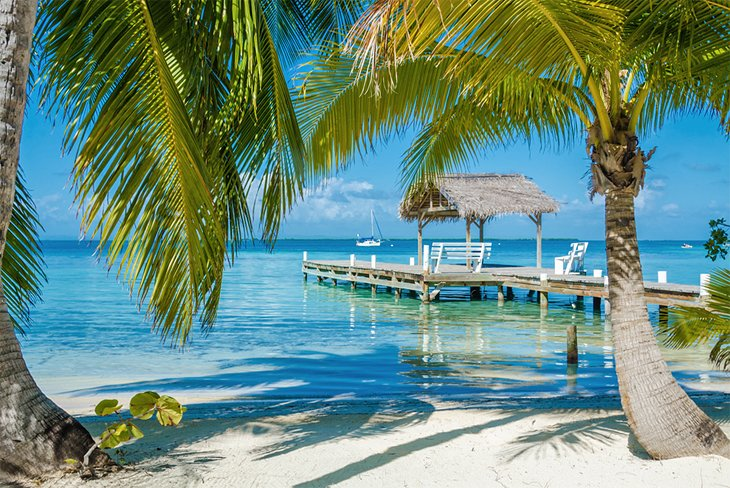 places december travel cheap belize planetware dock palm trees