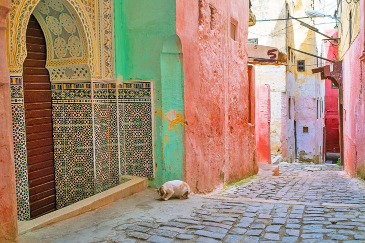 Colorful buildings in the Meknes Medina