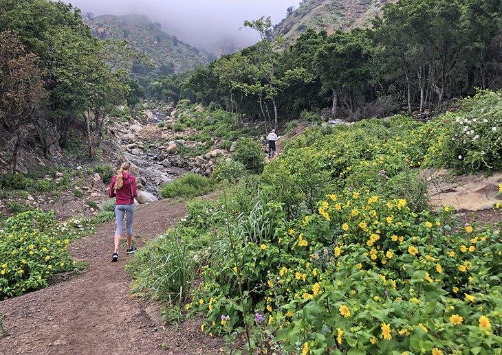 Excursionistas en el sendero San Ysidro