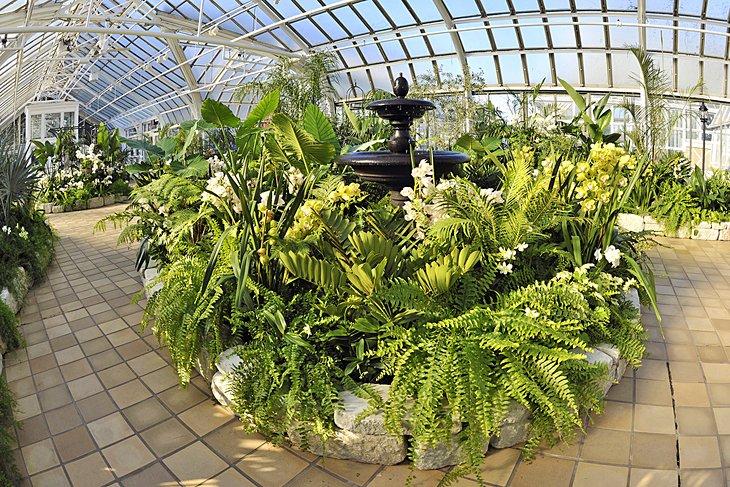 Plantas dentro del Conservatorio Franklin Park