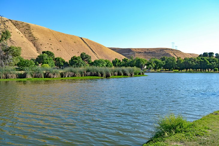 12 Top Rated Things To Do In Bakersfield Ca Planetware