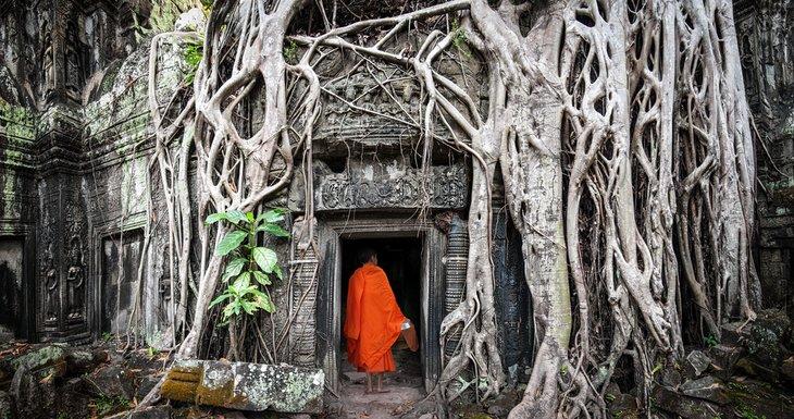 Буддийский монах в храме Та Пром, Ангкор Ват.