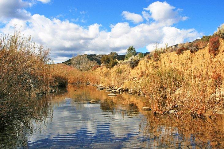 Sespe Creek