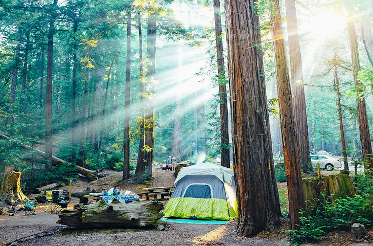 12 Top Rated Campgrounds Near Sur