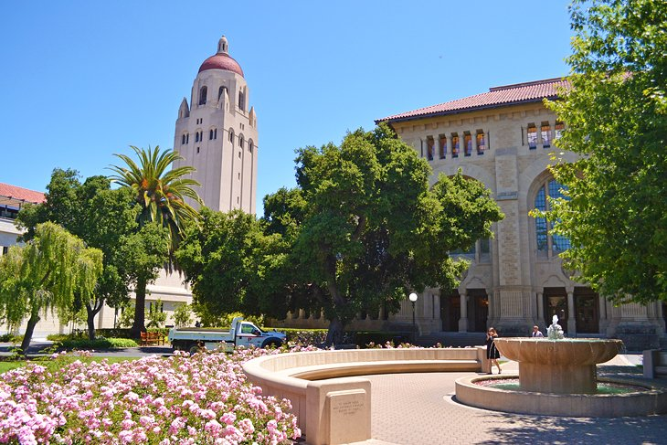 12 Top Rated Attractions Amp Things To Do In Palo Alto Ca