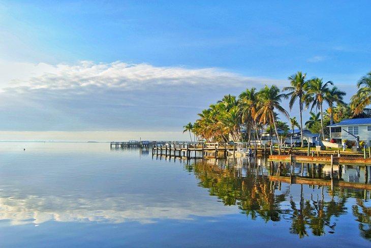 Palmeras, cielo azul y aguas tranquilas en Matlacha