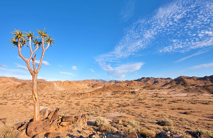 Ai-Ais Richtersveld Transfrontier National Park