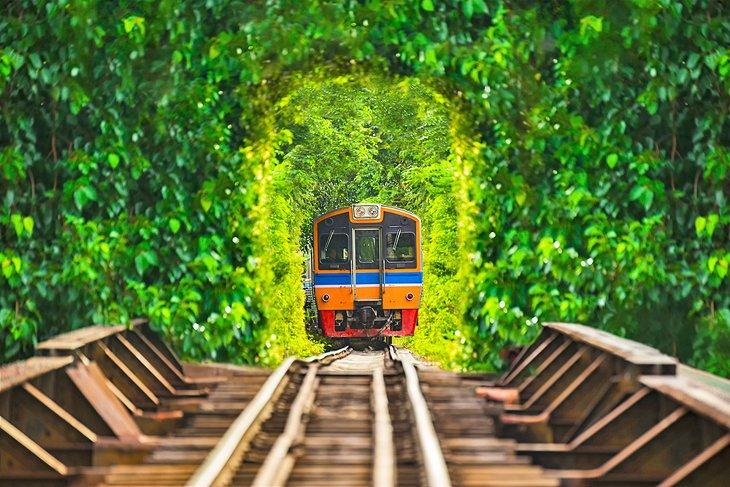 Поезд в Тайланде едет по пышному туннелю.