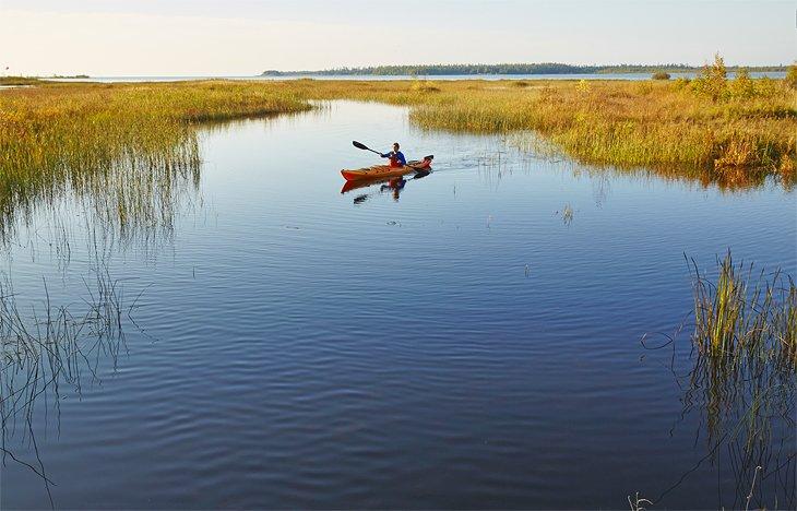 Un kayakista remando por el tranquilo Rieboldt Creek