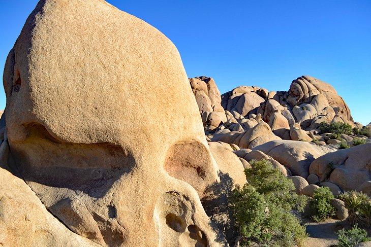 Roca del cráneo