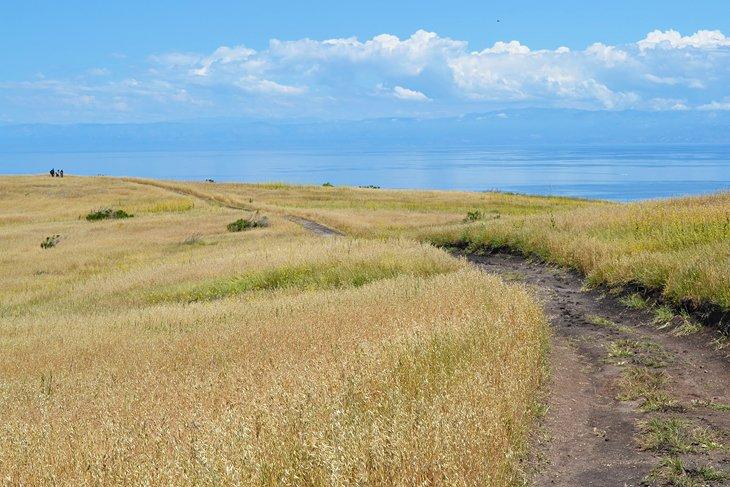 Isla Santa Cruz, Parque Nacional Channel Islands