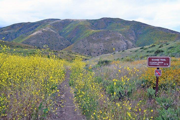 Área recreativa nacional de las montañas de Santa Mónica