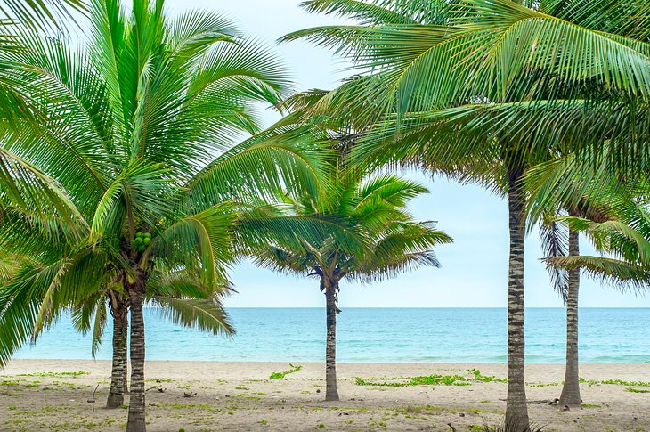 17 Top-Rated Beaches in Ecuador | PlanetWare