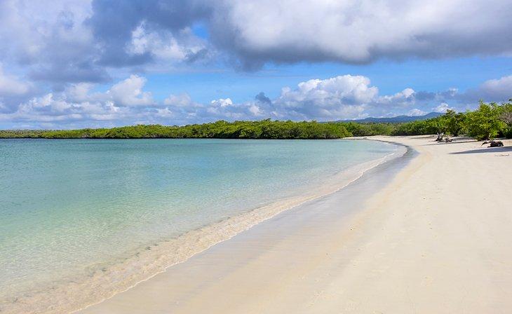 17 Top Rated Beaches In Ecuador Planetware