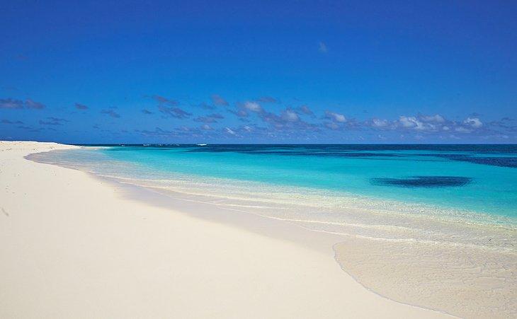 Prístina playa del oeste, Isla de los Pájaros