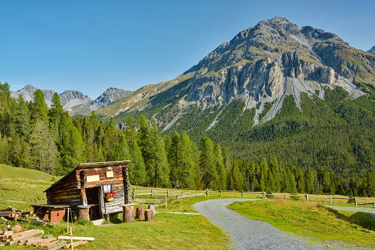 Ruta de senderismo en el Parque Nacional Suizo
