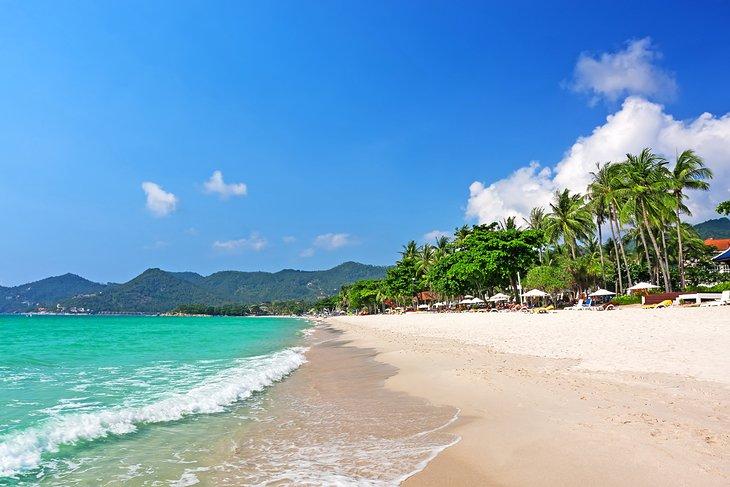 Курорты на пальмовом пляже Чавенг Бич