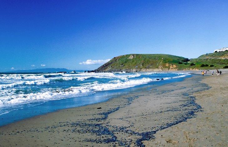 Playa Linda Mar