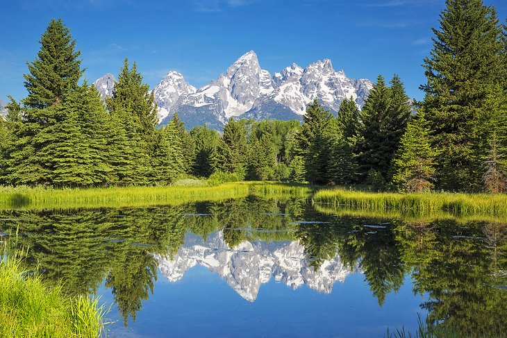 View of the Tetons from Schwabacher Landing, Jackson Hole