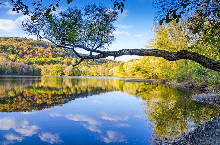 Landscape New Jersey