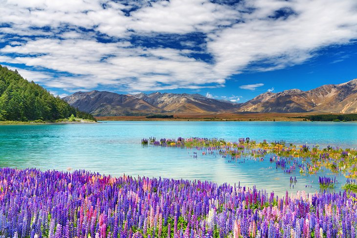 top-places-to-visit-in-the-world-new-zealand.jpg