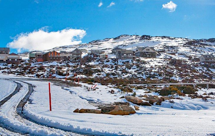 Área del campo de esquí Ben Lomond, Parque Nacional Ben Lomond