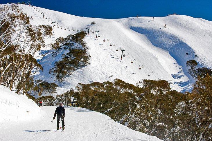 monte  Hotham, Parque Nacional de los Alpes Australianos
