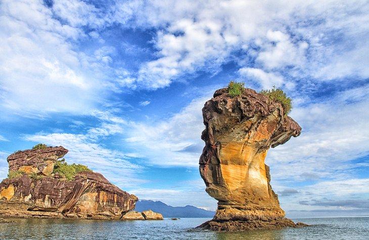 پارک ملی باکو بورنئو مالزی