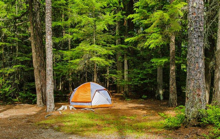 Campamento Fish Creek