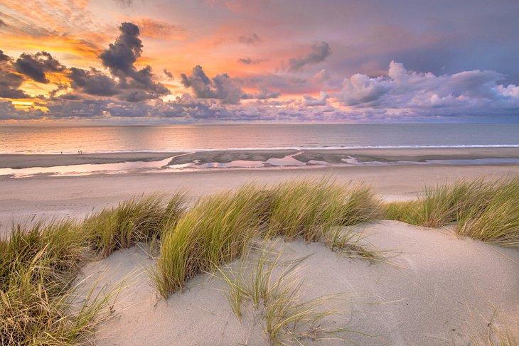 Sand dunes at sunset in Zeeland