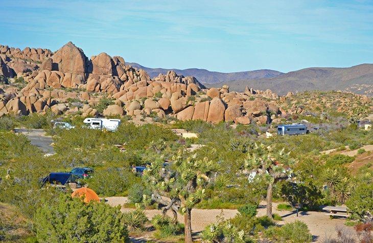 Campamento Jumbo Rocks