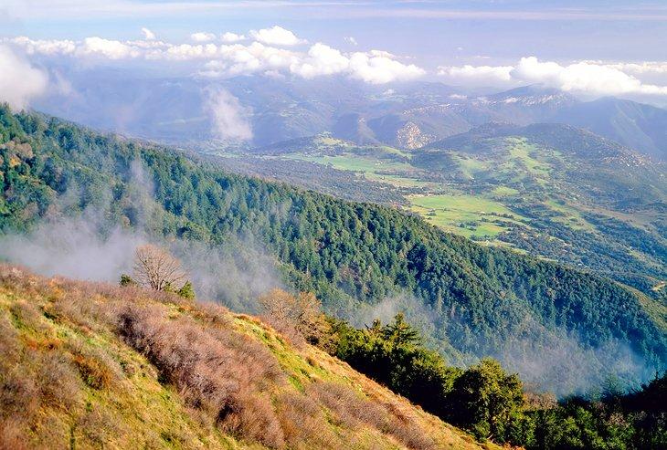 Vista desde el monte.  Palomar
