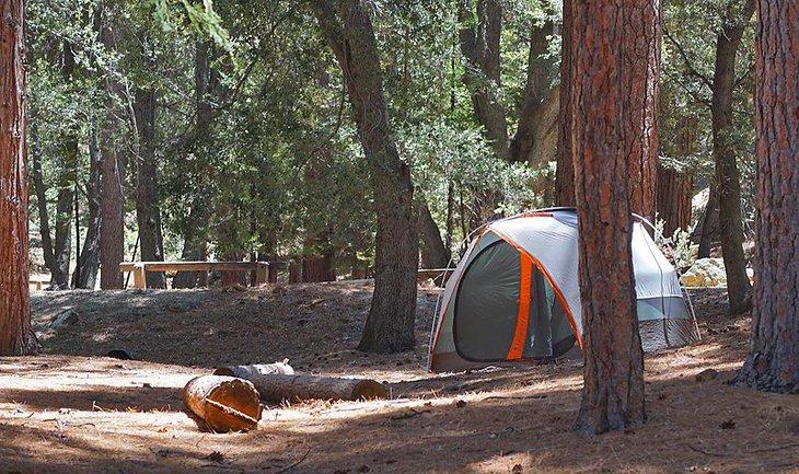 Campamento Fern Basin