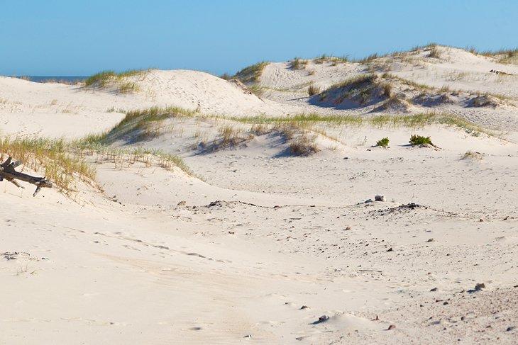Dunas de arena en la playa de El Pinar