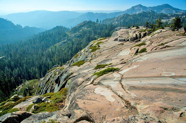 Mirador del bosque nacional de Tahoe
