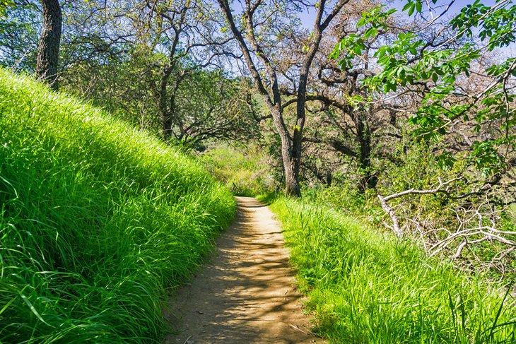 Ruta de senderismo en el parque del condado de Santa Teresa