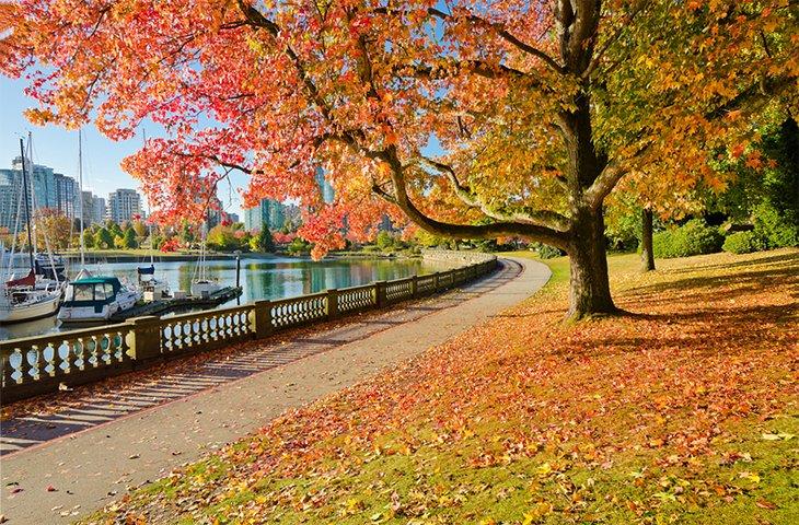 Colores de otoño a lo largo de un sendero en Stanley Park