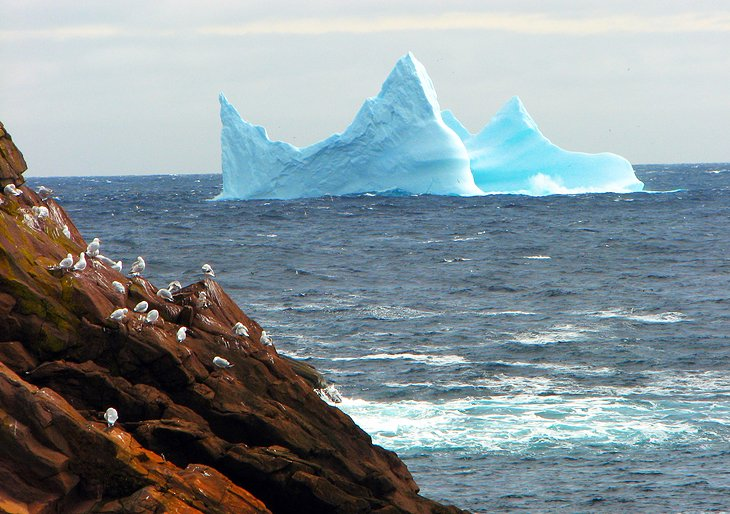 canada in pictures beautiful places to photograph newfoundland icebergs