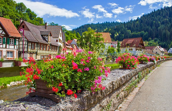 Flowers in the picturesque village of Schiltach