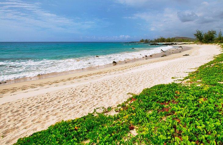Playa de Makalawena